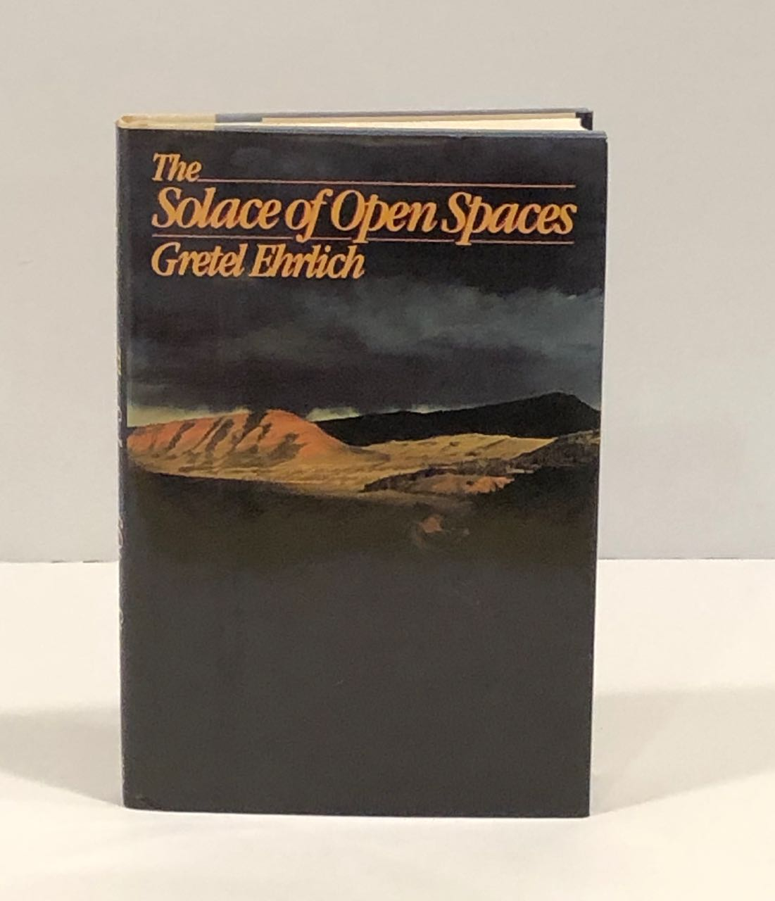 Image for The Solace of Open Spaces