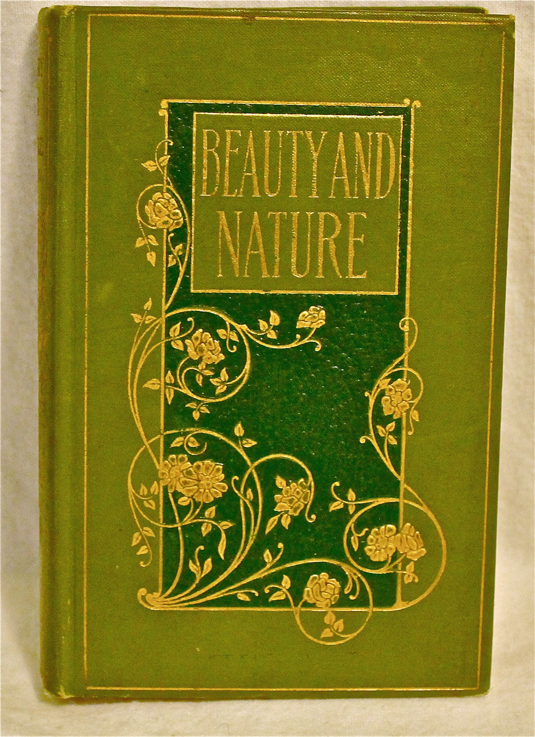 Image for Beauty and Nature